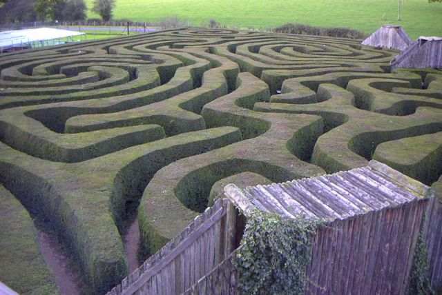 Longleat hedge maze (Wikipedia Commons)
