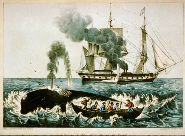19th-century whaler