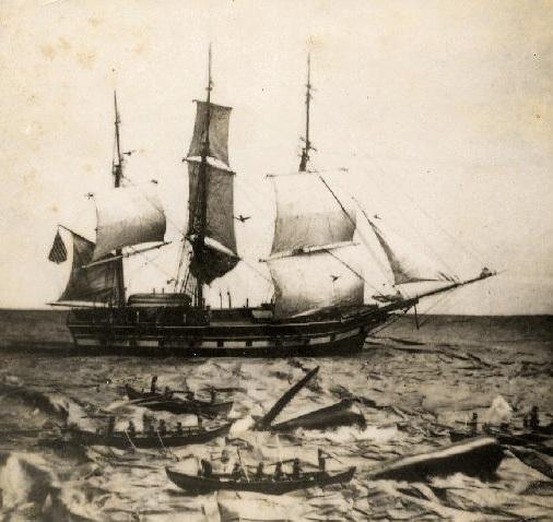 whaling-ship